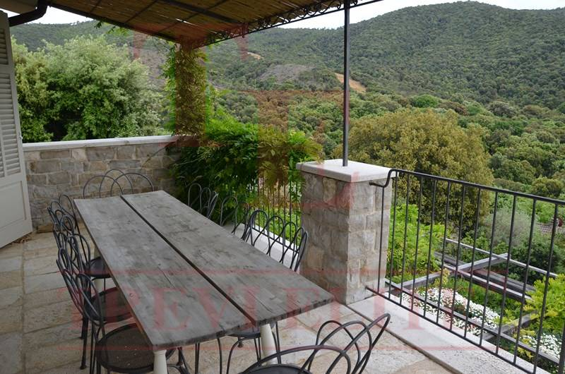 Villa with the garden and swimming pool in Castiglione della Pescaia